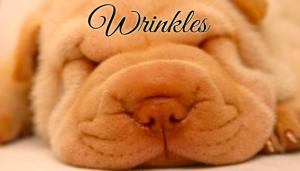 Treating wrinkles